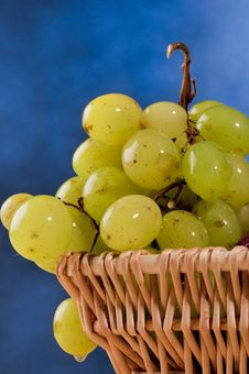 Free Green Grapes Stock Images - 17125124