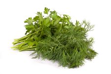 Free Bunch Of Fresh Green Dill And Parsley Stock Images - 17127334