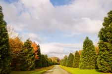 Free Autumn Road Stock Photography - 17129812