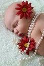 Free Newborn Girl Royalty Free Stock Photo - 17131275