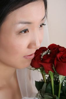 Korean Bride Stock Image