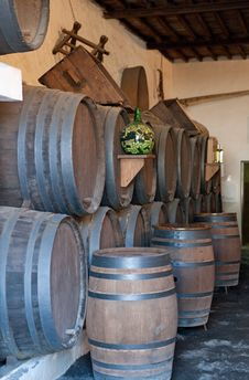 Wine Barrels Stock Image