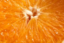 Free Orange Macro Royalty Free Stock Photography - 17133447