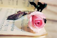 Beauty Treatment-pink Rose And Candle Royalty Free Stock Photography