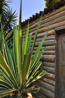 Free Wooden Cabin With Sisal Stock Photos - 17134853