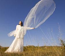 Free Romantic Woman Stock Photography - 17138492