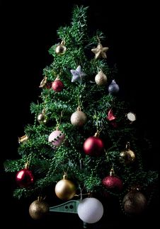 Free Christmas-tree Stock Photos - 17138573