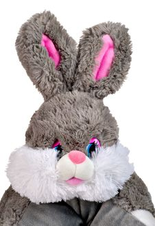 Free Soft Toy A Rabbit Stock Image - 17138811
