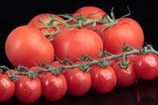 Free Cherry Tomatoes Stock Image - 17138951