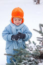 Free Little Boy Playing Snowballs Royalty Free Stock Images - 17142209