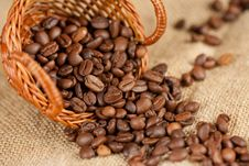 Free Coffee Beans Royalty Free Stock Photo - 17140065