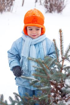 Free Little Boy Playing Snowballs Royalty Free Stock Photo - 17142245