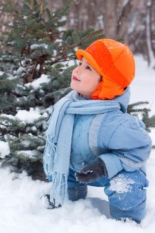 Free Little Boy Playing Snowballs Royalty Free Stock Image - 17142286