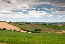 Free Hilly Countryside Of Le Marche, Italy Stock Image - 17143271