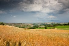 Free Hilly Countryside Of Le Marche, Italy Royalty Free Stock Photo - 17143355