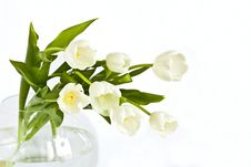 Free Beautiful Bouquet Of Tulips Stock Images - 17143454