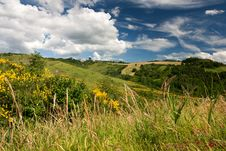 Free Hilly Countryside Of Le Marche, Italy Royalty Free Stock Photos - 17143618