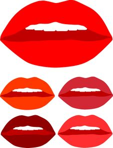 Kiss Lips Color  With White Teeth Royalty Free Stock Images