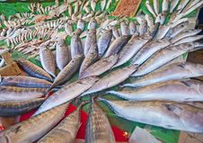 Fresh Fish At A Market Stock Photo