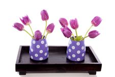 Free Little Vases With Purple Tulips Stock Photography - 17145992