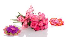 Free White Roses With Pink Edges Stock Photos - 17146153