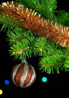 Free Christmas Decorations Stock Photography - 17146212