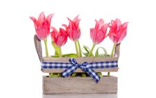 Free Red Tulips In A Wooden Crate Stock Image - 17146661