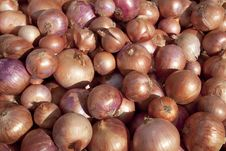 Free Onions Royalty Free Stock Images - 17146989