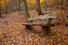 Free Bench In An Autumnal Wood Stock Photography - 17147702