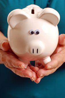 Free Future Savings Royalty Free Stock Images - 17149739