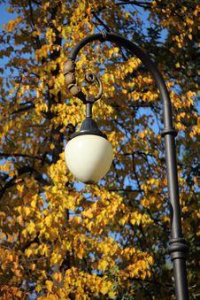 Free Autumn Streetlight Stock Photography - 17150302