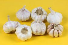 Free Garlic Stock Photography - 17151092