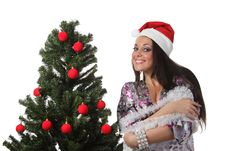 Free Woman Decorate A Christmas Tree Stock Photography - 17151792