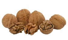 Free Walnuts, Whole And Unshelled Stock Photos - 17156163
