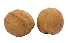Free Two Whole Walnuts Royalty Free Stock Photos - 17156178