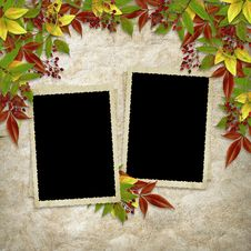 Free Card For The Holiday  With Autumn Leaves Royalty Free Stock Photos - 17158998