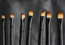 Professional Makeup Brushes Royalty Free Stock Images