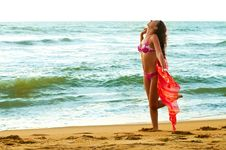 Young Woman On The Beach Stock Photography