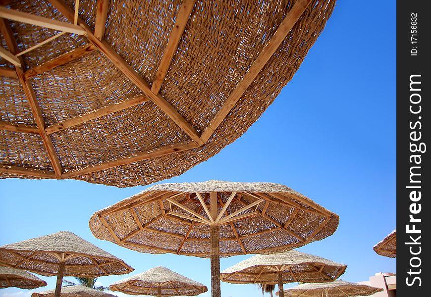 Umbrellas of the beach