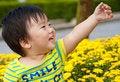 Free Happy Baby Royalty Free Stock Photography - 17161577