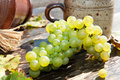 Free Composition With Grape Royalty Free Stock Images - 17169669