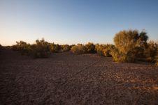 Free Dry Desert Stock Images - 17161494
