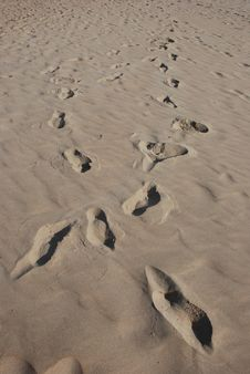 Free Crisscros Footprints In Sand Stock Photography - 17161542