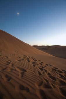Free Dry Desert Royalty Free Stock Photo - 17161555