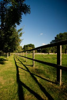 Free Fence Dividing Orchard And Meadow Stock Photos - 17163663