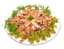 Boiled Shrimps Royalty Free Stock Photo