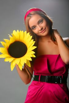 Free Girl With A Sunflower In A Pink Dress On A Grey Royalty Free Stock Photo - 17164725