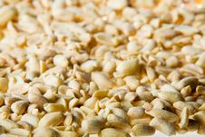 Handful Of Salted Peanuts Royalty Free Stock Images