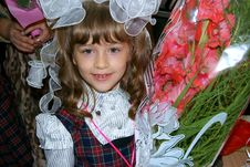 Free Portrait Of The First-grader Royalty Free Stock Photos - 17166298