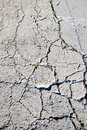 Free Cracked Road Flooring Texture Royalty Free Stock Image - 17171886